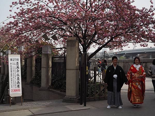 180403-2 淺草隅田公園 (8).JPG