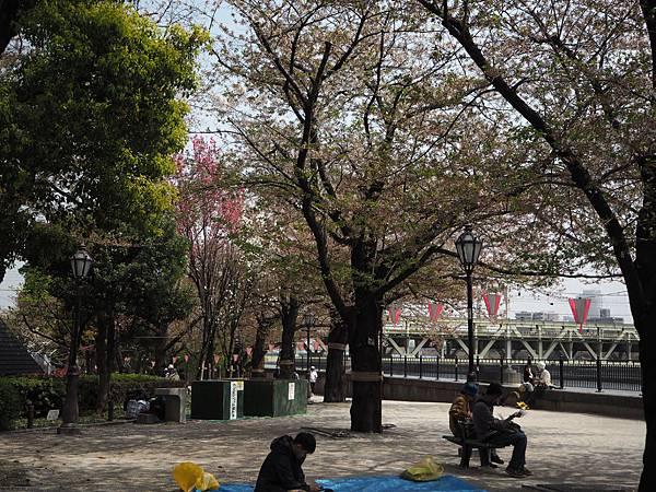 180403-2 淺草隅田公園 (13).JPG