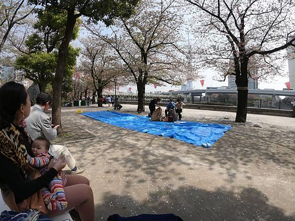 180403-2 淺草隅田公園 (17).JPG