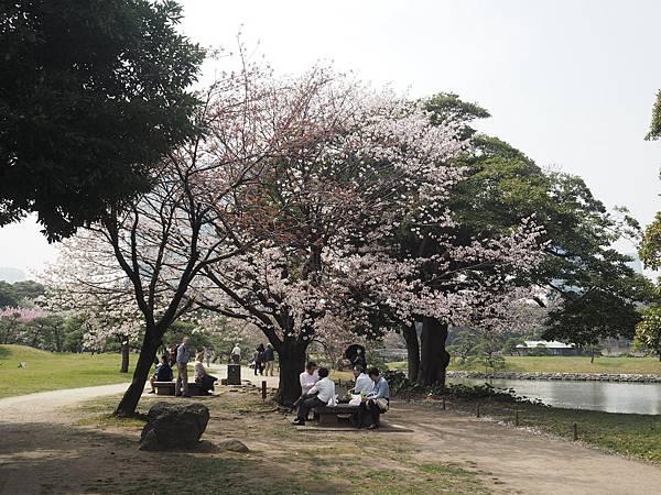 180403-4 濱離宮恩賜庭園 (14).JPG