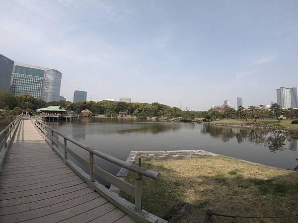 180403-4 濱離宮恩賜庭園 (32).JPG