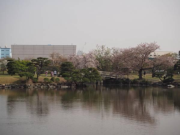 180403-4 濱離宮恩賜庭園 (36).JPG