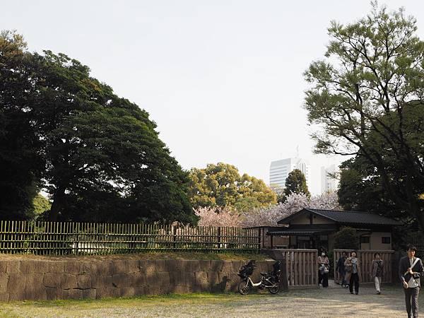 180403-4 濱離宮恩賜庭園 (50).JPG