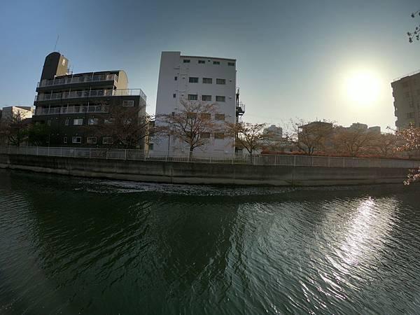 180403-5 清澄白河 (18).JPG