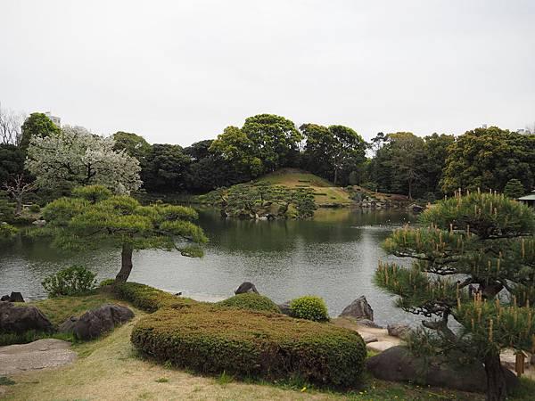 180405-4 清澄庭園 (5).JPG