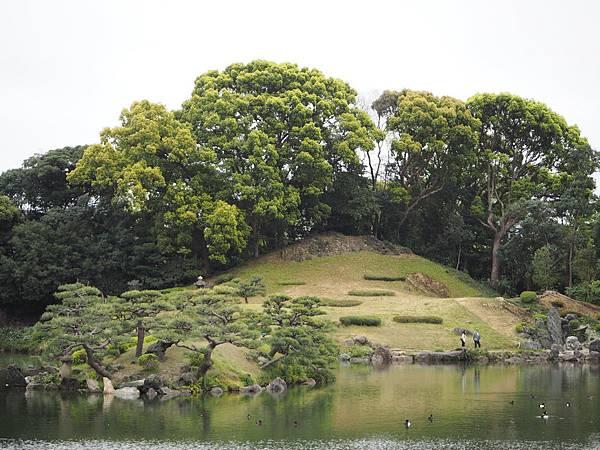180405-4 清澄庭園 (8).JPG