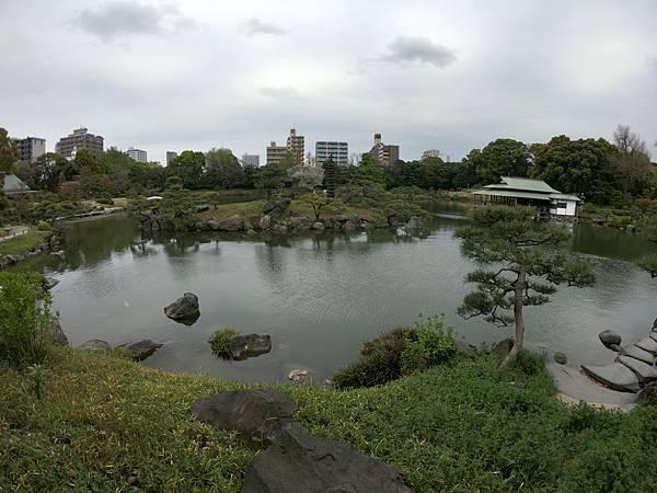 180405-4 清澄庭園 (12).JPG