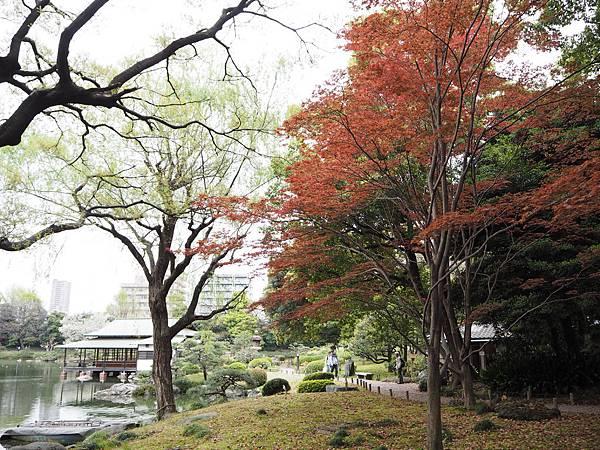 180405-4 清澄庭園 (28).JPG