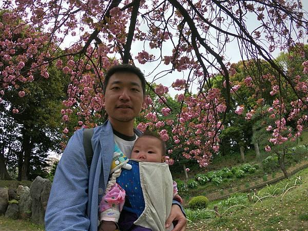 180405-4 清澄庭園 (33).JPG