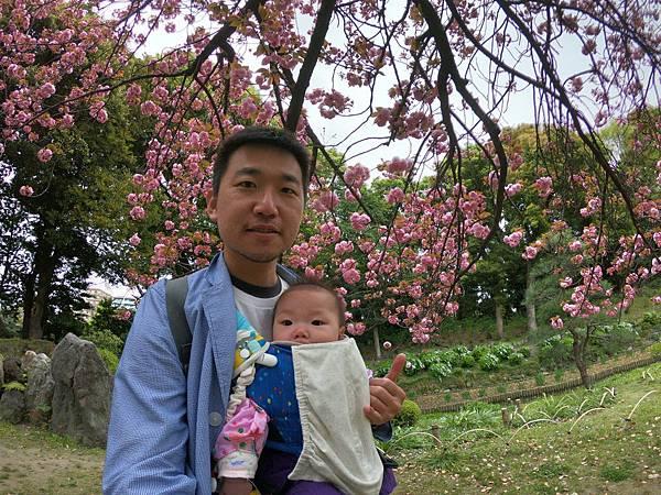 180405-4 清澄庭園 (34).JPG