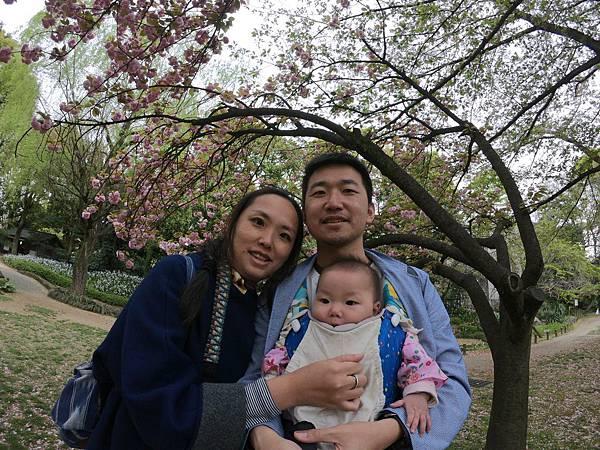 180405-4 清澄庭園 (41).JPG