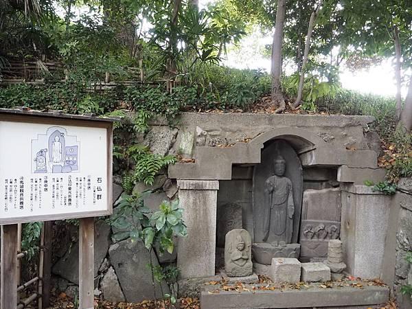 180405-4 清澄庭園 (42).JPG