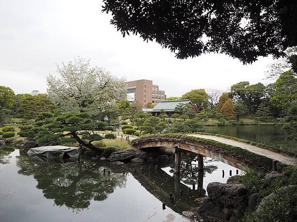 180405-4 清澄庭園 (45).JPG