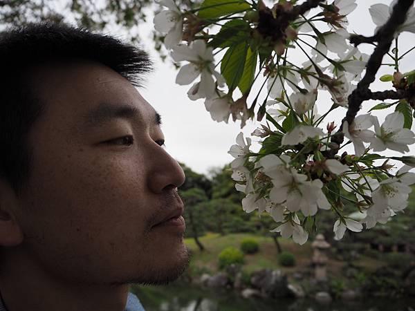 180405-4 清澄庭園 (51).JPG