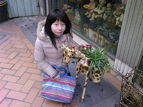 鶯歌某店前的長頸鹿