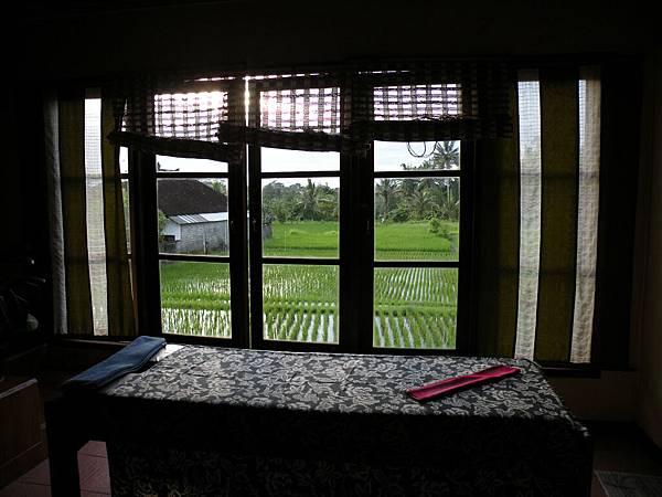 外面就是稻田view