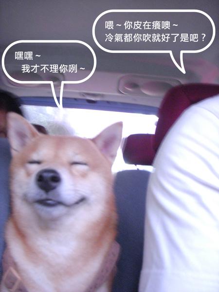 男人與公狗-3.jpg