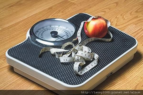 公斤換算磅、公斤換算斤