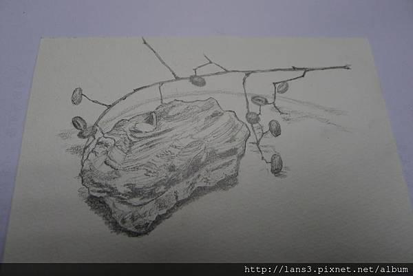 2014.03.06~鉛筆精細素描
