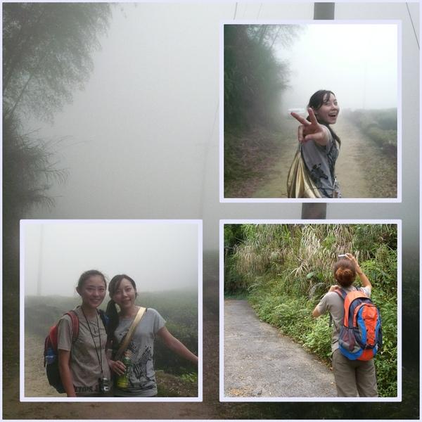 003~霧茫茫了