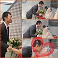 龜結婚~012.jpg