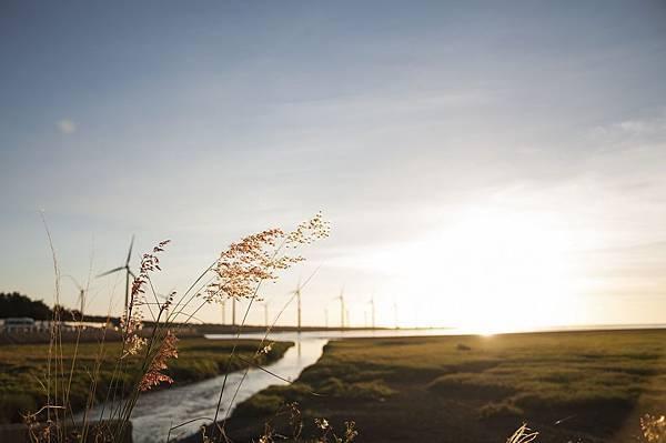 2014.07.02-D90-KIT-高美濕地 (4).jpg