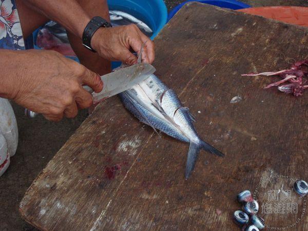 翻至魚背  於左側魚身部分話三刀