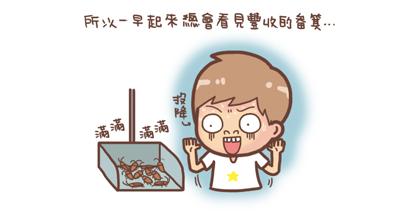 野貓記事-聚寶盆3-.jpg