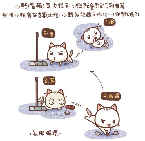 野貓記事-聚寶盆2-.jpg