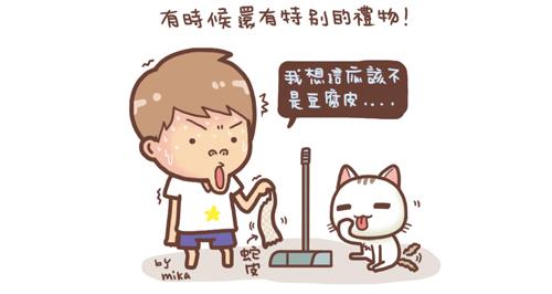 野貓記事-聚寶盆4-.jpg