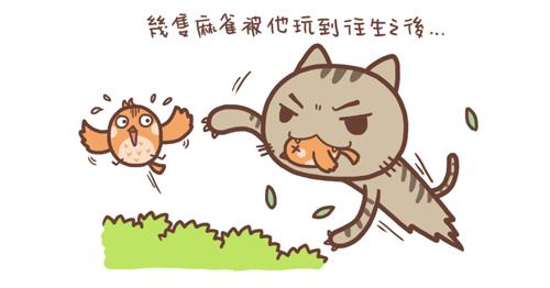 貓孝敬3.jpg