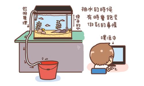 換水3.jpg