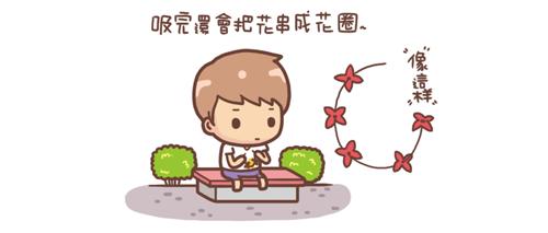 矮仙丹3.png