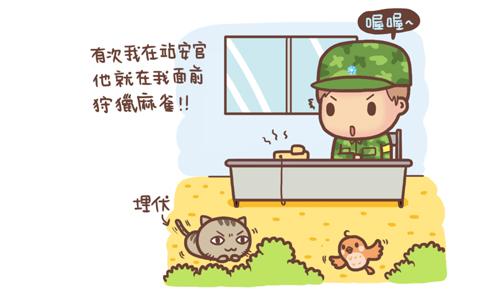 貓孝敬2.jpg