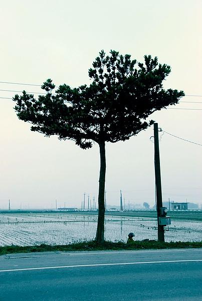 雲林D1-2.jpg