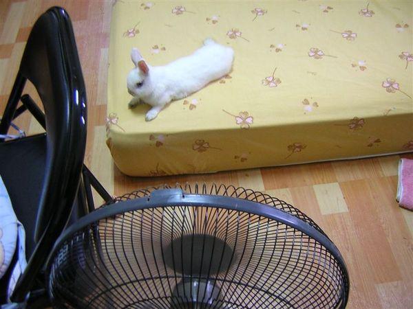 自己找最舒服的位子,上有冷氣,前有電扇
