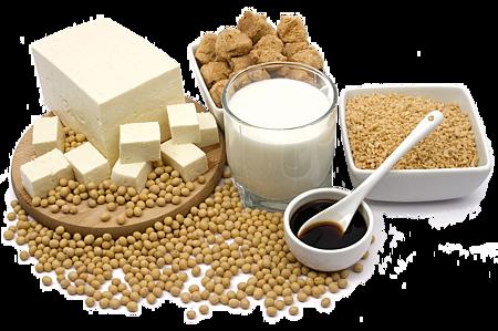黃豆製品擁有大量雌激素