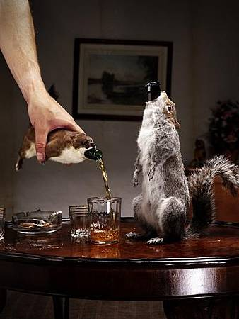 brewdog_taxidermy211_534