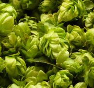 whole-hops