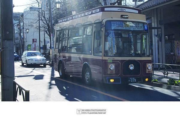 P2132645.JPG