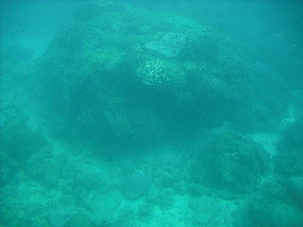 [506]坐半潛艇