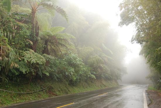 046霧氣瀰漫的山道.jpg