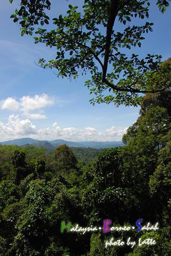 99.6.8-Day2 of Sabah-18.jpg