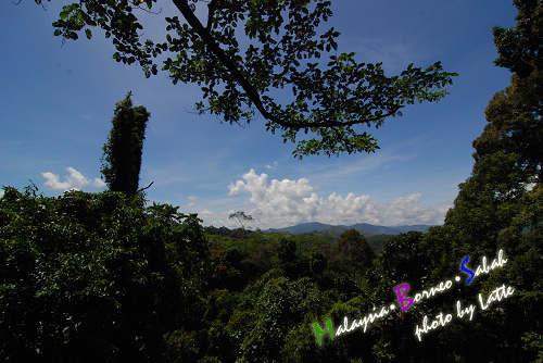 99.6.8-Day2 of Sabah-28.jpg