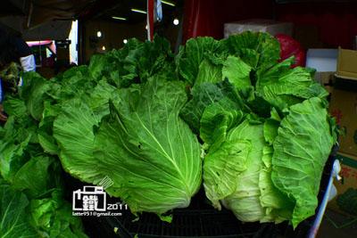 高山蔬菜2-1.jpg