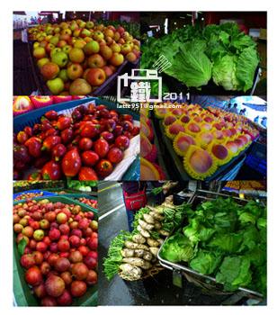 高山蔬菜1-1.jpg