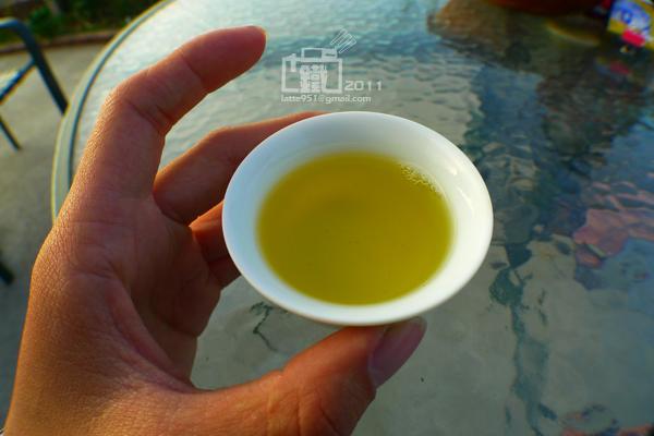 龍鳳峽高山茶2.jpg