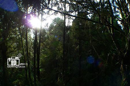 P3430558.jpg