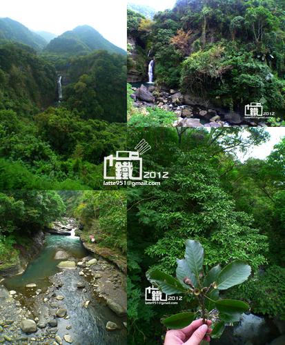 山林1-2.jpg