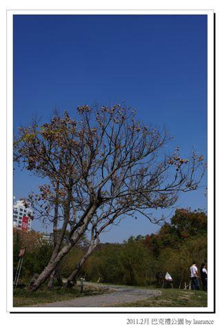 2011.2月 巴克禮公園-3.jpg